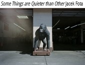 "Album Jacka Foty ""Some Things are Quieter than Others"" w Bookoff MSN"